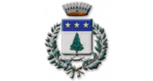 Pino Torinese